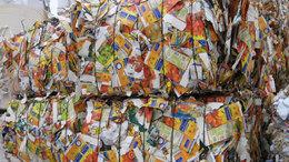 95 tonna italos kartondobozt gyűjtöttek a gyerekek