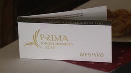 Ők a megyei Prima-díj idei jelöltjei