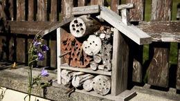 Bárki üzemeltethet méhecskehotelt