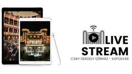 Online bemutatót tart a Csiky