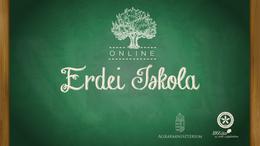 Online erdei iskola sorozat indul