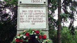 Evőeszköz, zsebkés és 50 kopejka is előkerült az orosz katonákat rejtő kiskorpádi sírgödörből