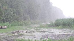 Záporok, zivatarok, majd tartós, intenzív esőzés!