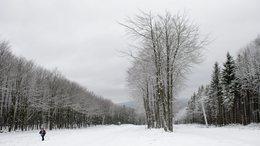 Így néz ki az idei első hó
