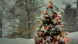 Felejtős idén (is) a fehér karácsony!