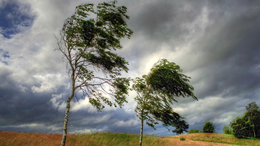 Viharos szélre figyelmeztet az OMSZ