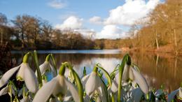 A hét közepére itt a tavasz