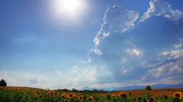 Mérsékelten meleg, kora nyári idő várható!