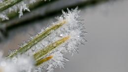 Sok gondot okozott a télies időjárás