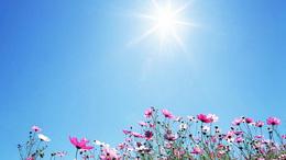 A megszokottnál szárazabb volt az elmúlt tavasz
