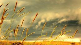 Heves zivatarok kíséretében fokozatosan enyhül a hőség