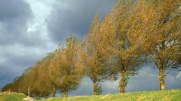 Erős lehűléssel és sok csapadékkal köszönt be az ősz!