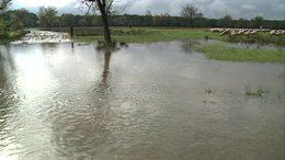 Egy hónap alatt, három havi eső hullott