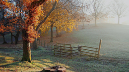 Hamisítatlan, késő őszi idő