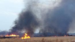 Gyújtogatás okozta a vasárnapi tüzet Gyenesdiáson
