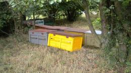 Kaptárostul lopta a méheket a somogyi testvérpár