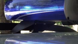 Körözött közokirathamisítót fogtak a balatoni zsaruk