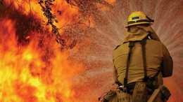Két hektáron lángolt az avar Som térségében