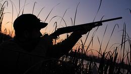 Tilosban vadásztak