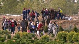 Magyar települések a kényszerbetelepítés ellen