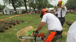 Barcsiak az ország legjobb favágó-tűzoltói