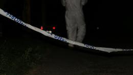 Gyilkosság Balatonföldváron