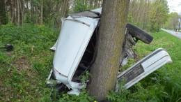 Kiugró vadak okoztak baleseteket