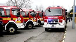 150 kilós disznót mentettek a tűzoltók