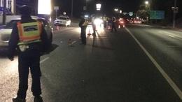 15 sofőr akadt fenn a pénteki razzián