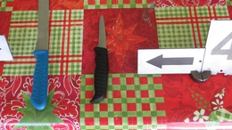 Csontozó késsel szúrta hátba lakótársát