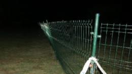 Szétverte a kerítést a kutyás strandon