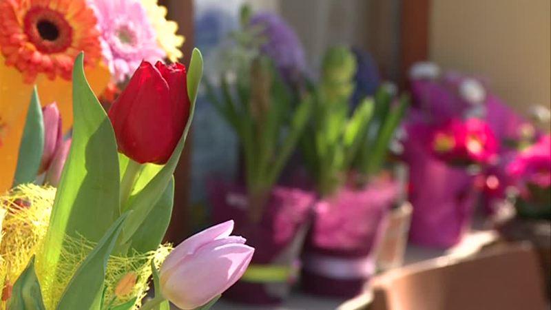 virág nőnap