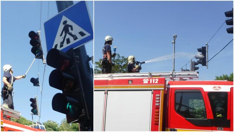 A kaposvári tűzoltók is csatlakoztak a nagytakarításhoz.