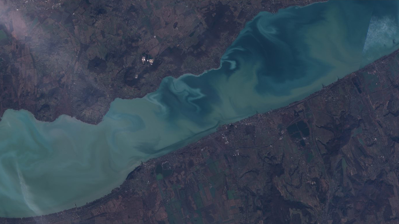 BalatonScience - Facebook