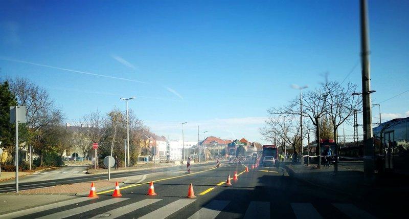 Fotó: nemethistvanprogram.hu
