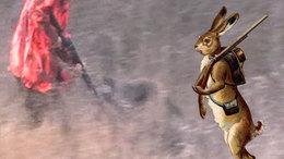 A Nyúl viszi Somogyban a vadászpuskát