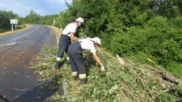 Vasúti vezetékre dőlt a fa, majd kigyulladt