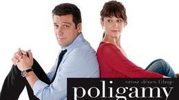 Poligamy, a társas játék
