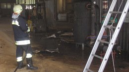 Fafeldolgozó üzemet  veszélyeztettek a lángok Barcson