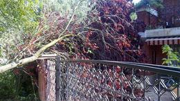 Házakba csapott a villám, leszakított tetőt repített az autókra a szél Somogyban