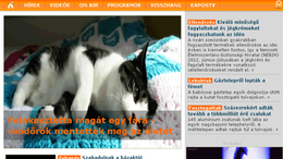 Minden weboldal legyen macskabarát