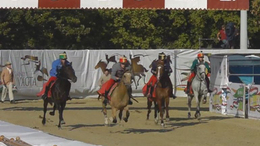 Somogyi lovas nyerte a Hevesi Vágtát
