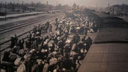 A holokausztban való részvételért perelték be a MÁV-ot