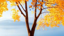 Hétfőn kezdődik a csillagászati ősz