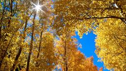 Napos, száraz, kora őszi idő!