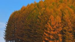 Felmelegedés, kellemes őszi idő