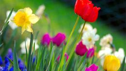 Jön a tavaszias idő!