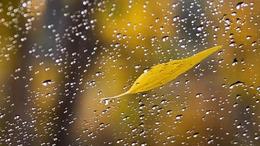 Hétfőtől beköszönt az igazi ősz!