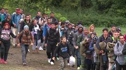 Ezerötszáz euróért csempészte a migránsokat