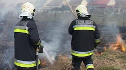Megmentették a fenyőerdőt a tűzoltók